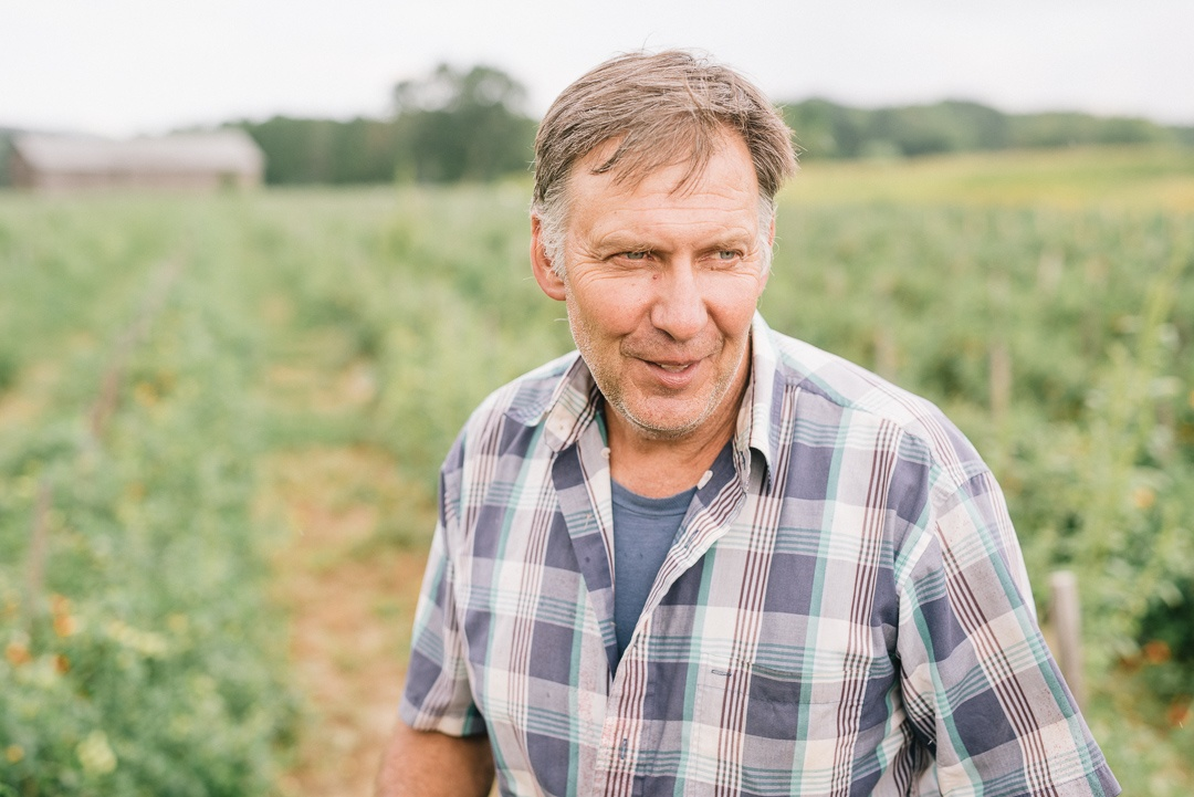 Boston Organics - Joe Czajkowski in a field of Cherry Tomatoes