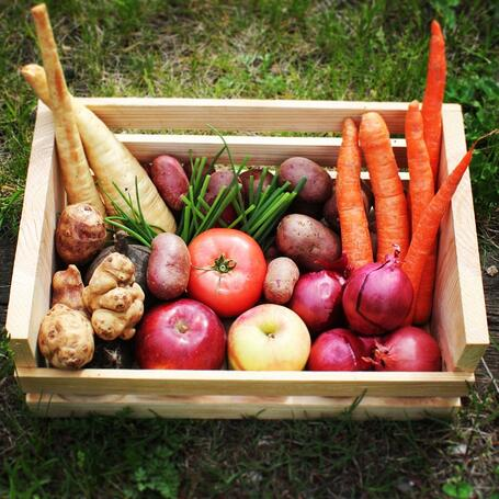 Dogma Box wk20 |Local Organic
