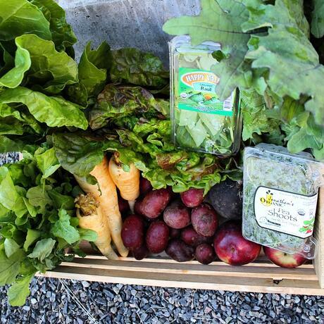 Dogma Box 23 | Local Organic