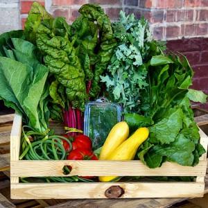 Dogma Box 26 | Local Organic