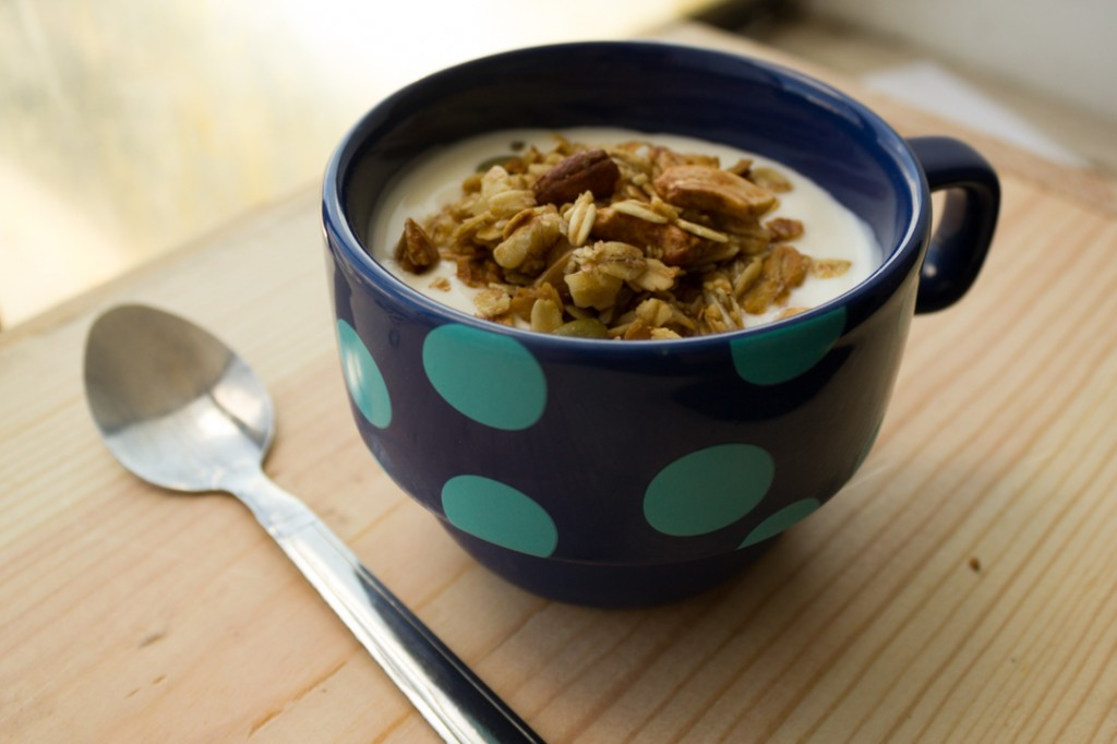 Boston Organics - Yogurt and Granola