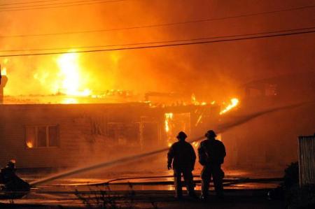 Mi Tierra Fire | Boston Organics