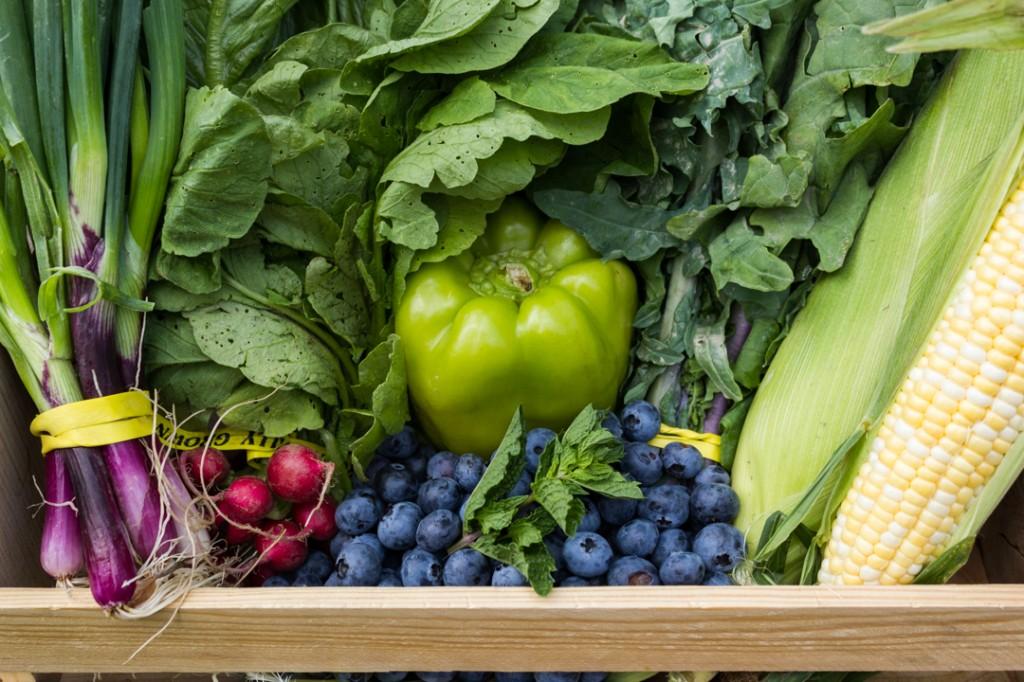 Dogma Box 33   Local Organic