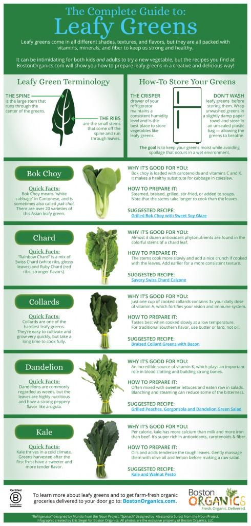 Leafy Greens Infographic | Boston Organics