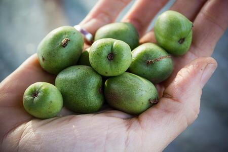 Kiwi Berry Hand | Boston Organics