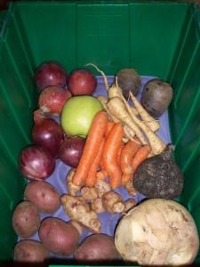 Boston Organics Local Box 2.15.12