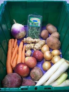 Boston Organics Dogma Box