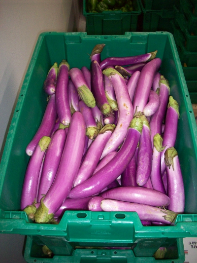 Atlas Farm Asian Eggplant