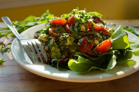 Arugula Caprese Salad with Kale Pesto Recipe | Boston Organics