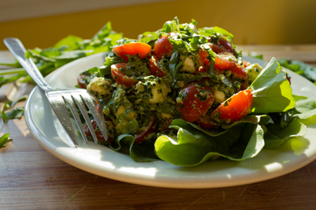 Arugula Caprese Salad with Kale Pesto Recipe | Boston Organics