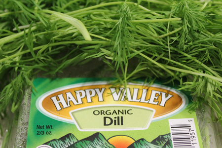 Fresh Organic Dill | Boston Organics