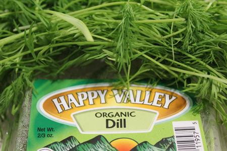 Fresh Organic Dill   Boston Organics