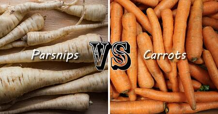 Parsnips vs. Carrots | Boston Organics