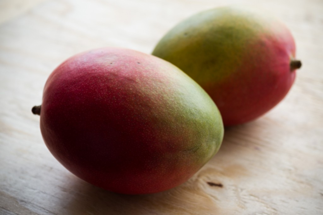 Kent Mango | Boston Organics