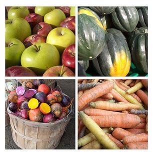 Medley of Fall Vegetables