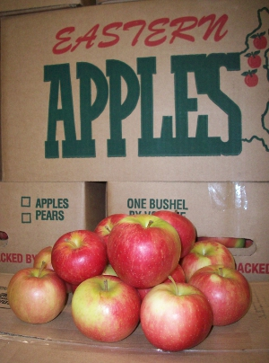 Dwight Miller Honeycrisp Apples