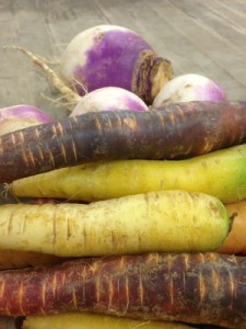 Rainbow Carrots and Turnips
