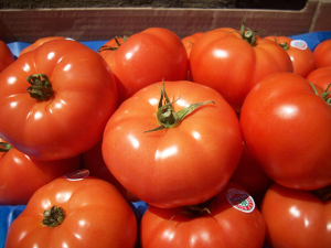 Organic hot house tomatoes   Boston Organics