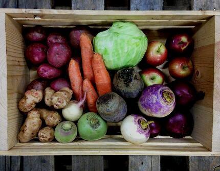 Dogma Box Week 4 | Local Organic
