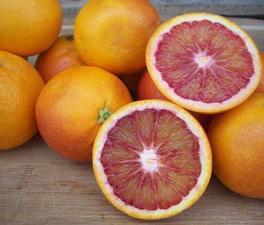 Blood Orange | Boston Organics