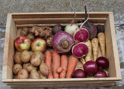 Dogma Box | Local Organic Produce