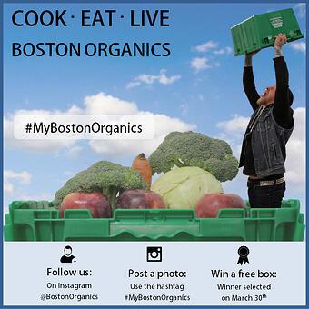 Cook Eat Live Boston Organics