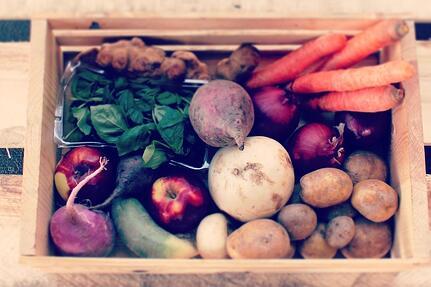 Dogma Box   Local Organic