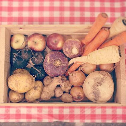 Dogma Box | Local Organic