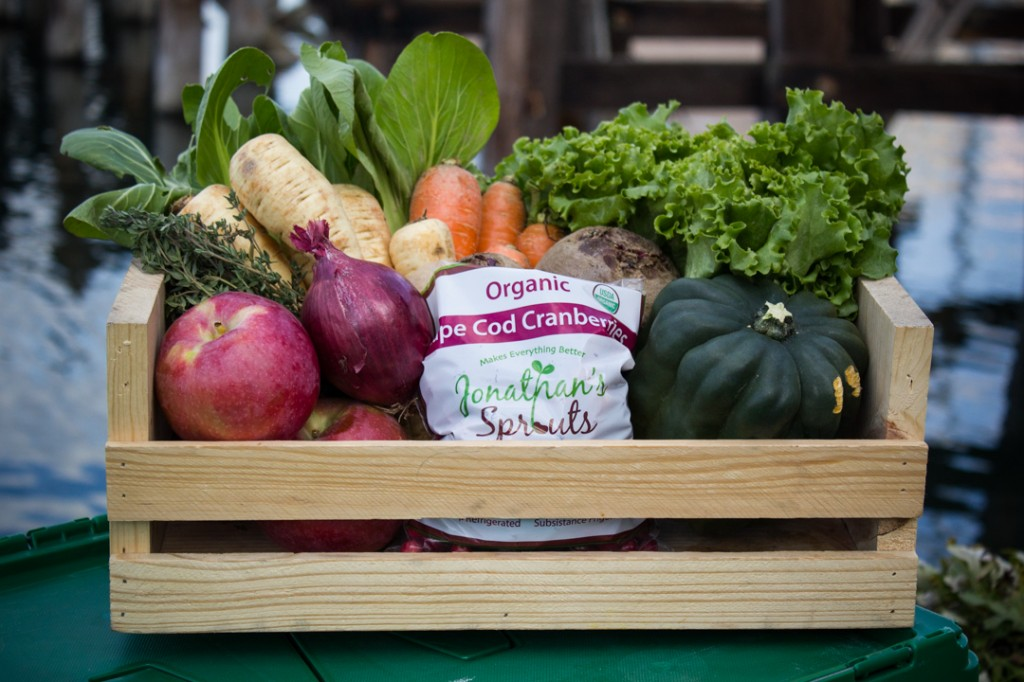 Local Dogma Box | Boston Organics