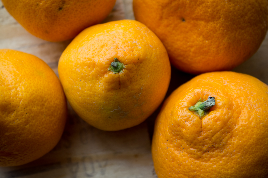 Organic Citrus   Boston Organics
