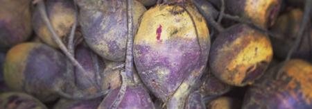 Organic Beets | Boston Organics