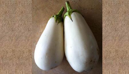 white_eggplant2