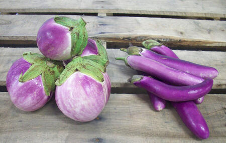 Eggplant Varieties| Italian Asian | Boston Organics