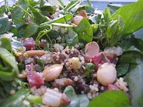 pea shoot salad with chorizo and almonds