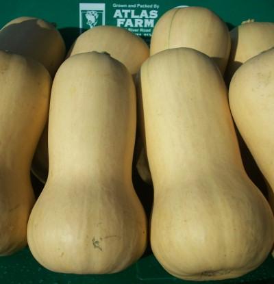 Atlas Farms Butternut Squash