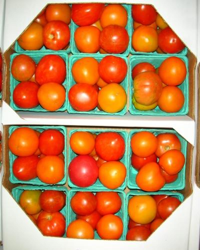 Atlas Farm Heirloom Tomato Pints