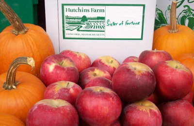 Sister of Fortune Apples from Hutchins Farm
