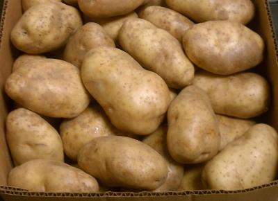 Misty Meadows Farm Shepody Potatoes