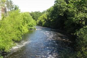 """Charles River, Newton Lower Falls MA"" by Wikipedia User Faolin42"