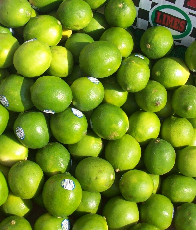 Lenny Baby Limes