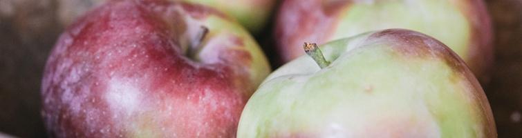 Apples_environmental3_orchard.jpg