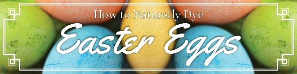 Boston Organics - Easter Eggs
