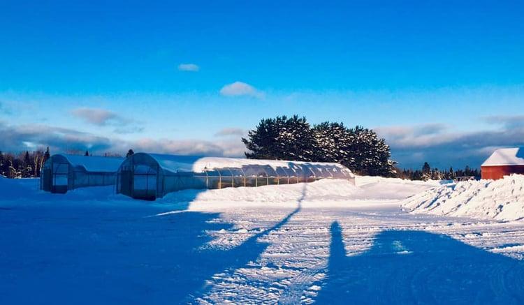 Natures_Circle_Farm_Winter