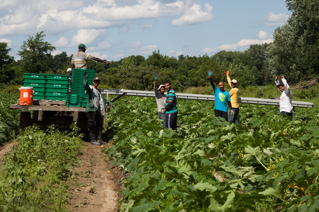 atlas_workers_waving_field_1080px