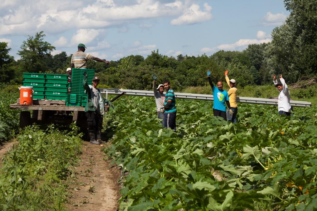 atlas_workers_waving_field_1080px