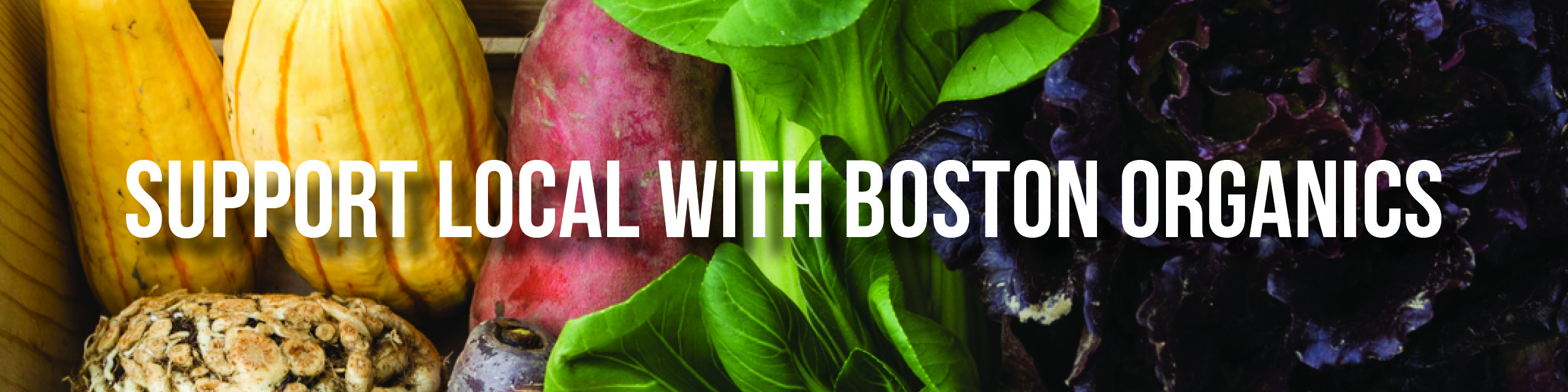 banner_support_local_with_boston_organics_600px