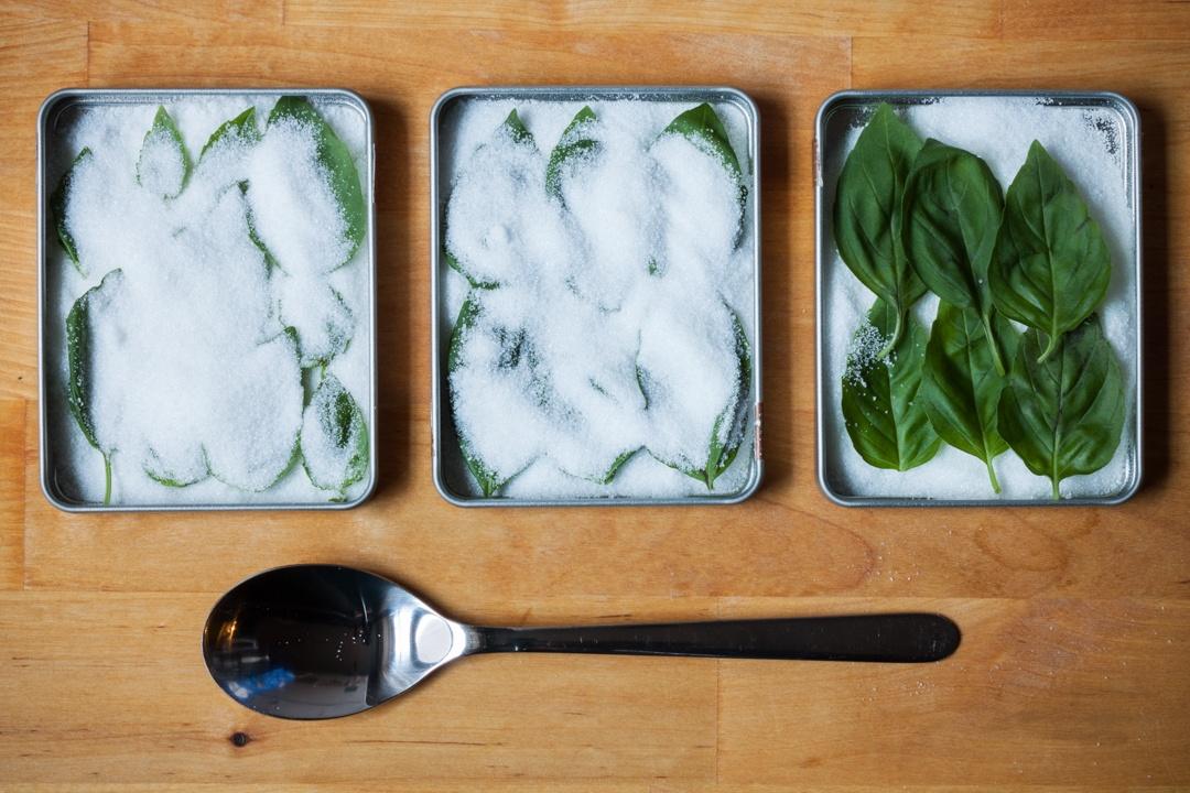 Boston Organics - Dry Basil
