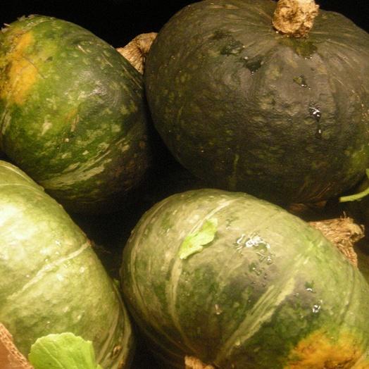 Kabocha Squash - photo courtesy of wikioticslan