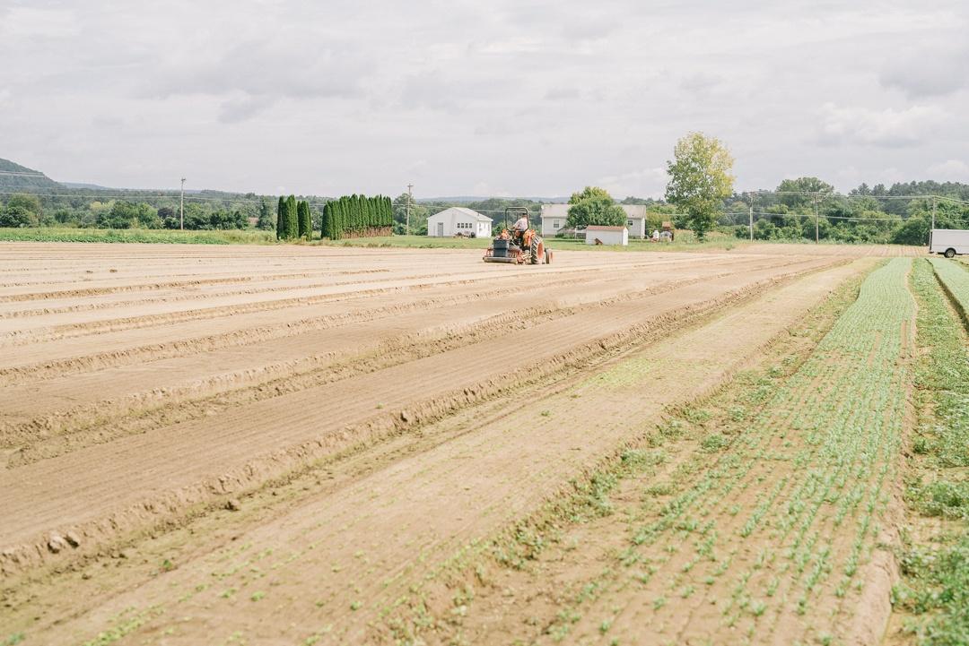 Boston Organics - Preparing a field at Queen's Greens