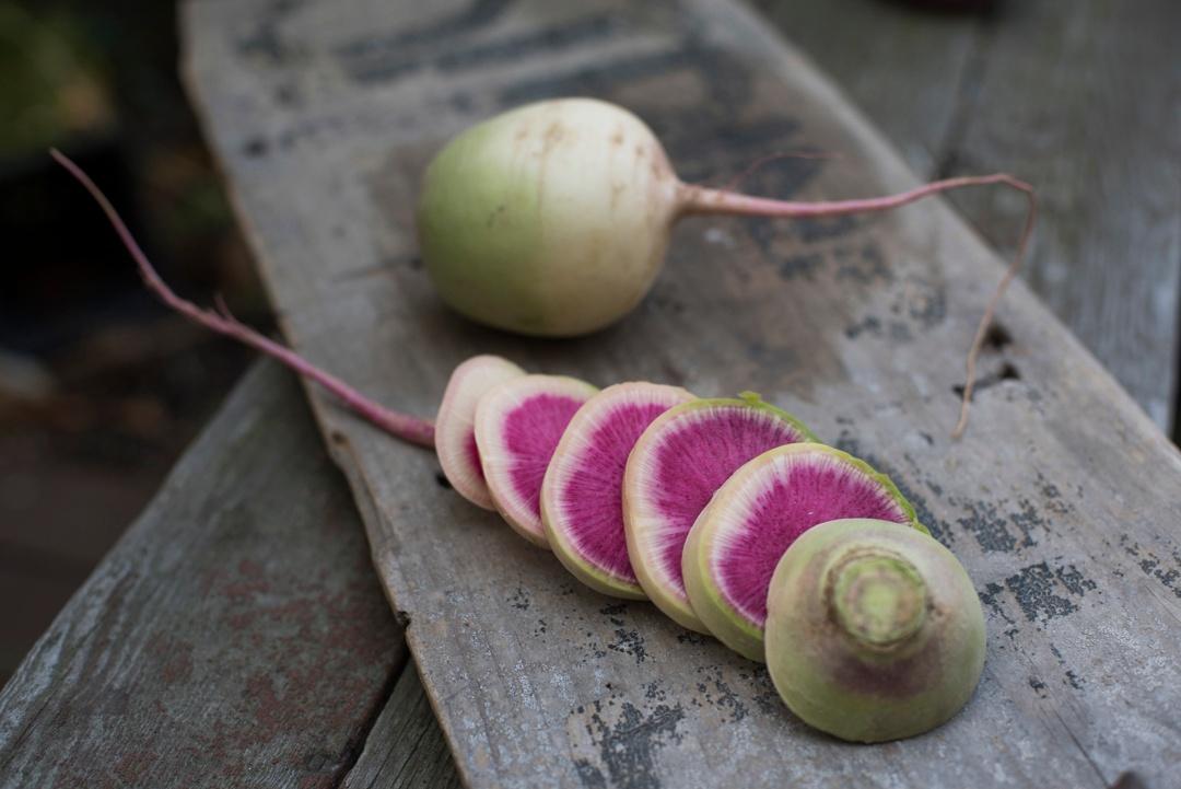 Boston Organics - Watermelon Radishes